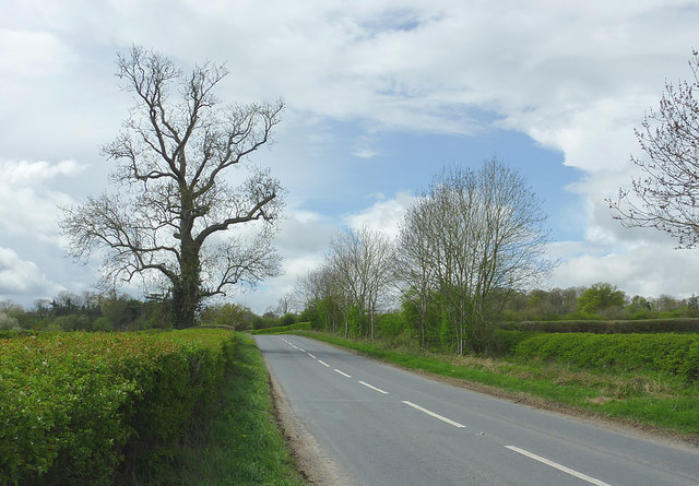 The A4112 to Weobley, Herefordshire