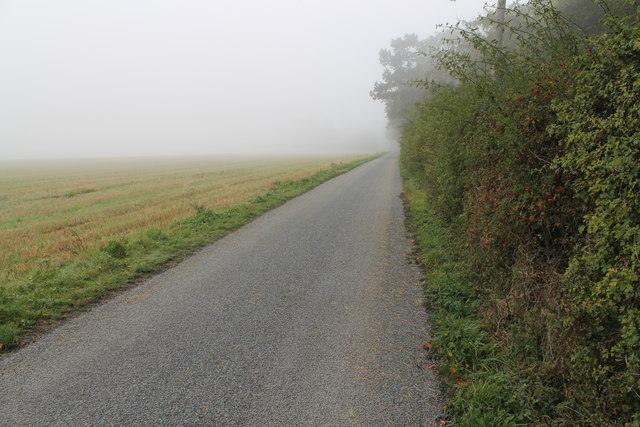 Misty road to Ram Farm