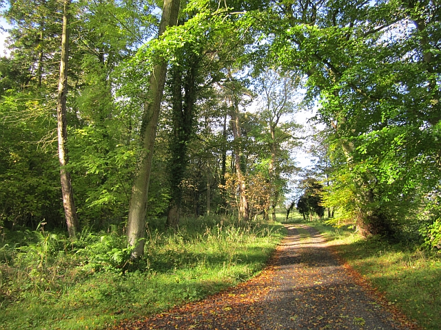 Estate road, Twizell