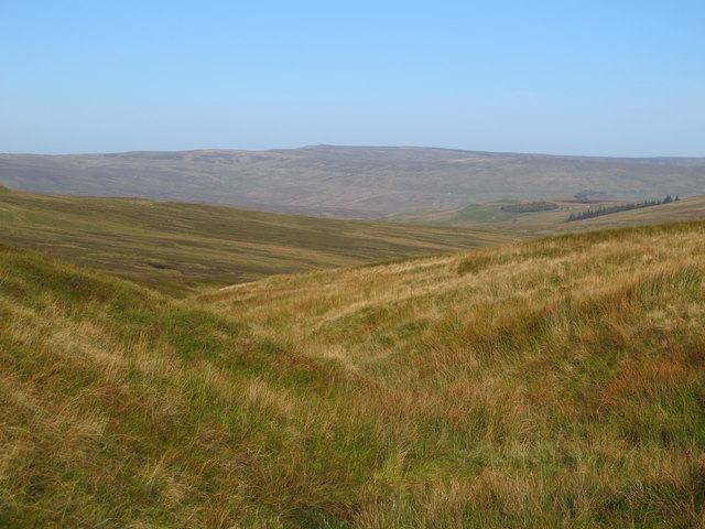 The cleugh of Corn Rigg Sike