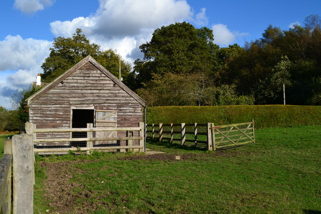 Stable and paddock at Holly Hatch