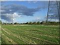 TF0807 : Farmland, West Marsh by JThomas