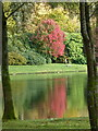ST7734 : Stourhead: autumn colour reflected in the lake by Chris Downer