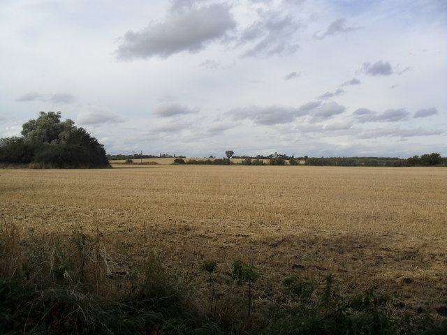 Farmland near Lower Shelton