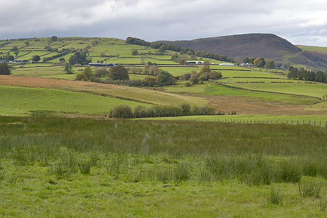 Farmland south of St. Harmon