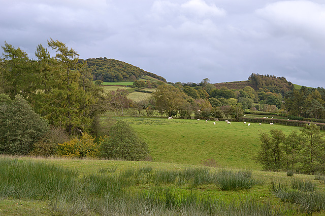 Farmland near Dol-fyr farm