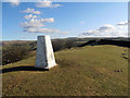 SJ9475 : Trig Point above Marksend Quarries by Row17