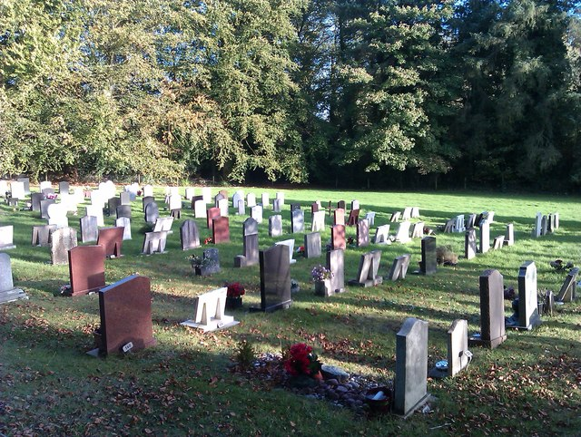 Shedfield cemetery in late afternoon sunlight