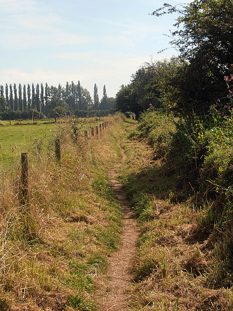 The Severn Way at Lickhill