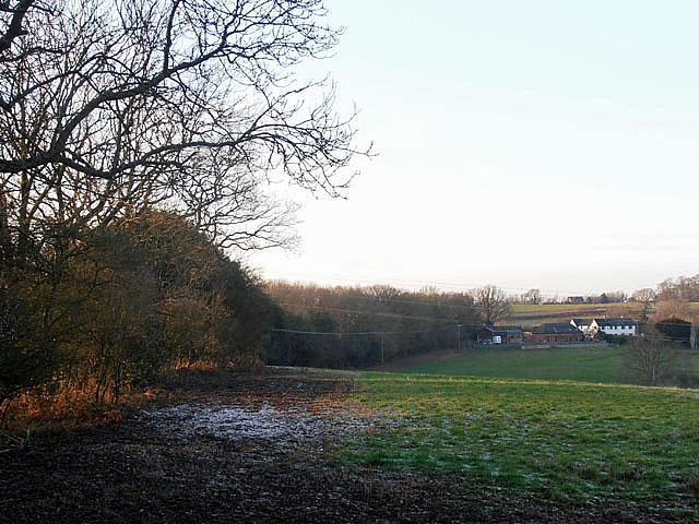Woodland boundary