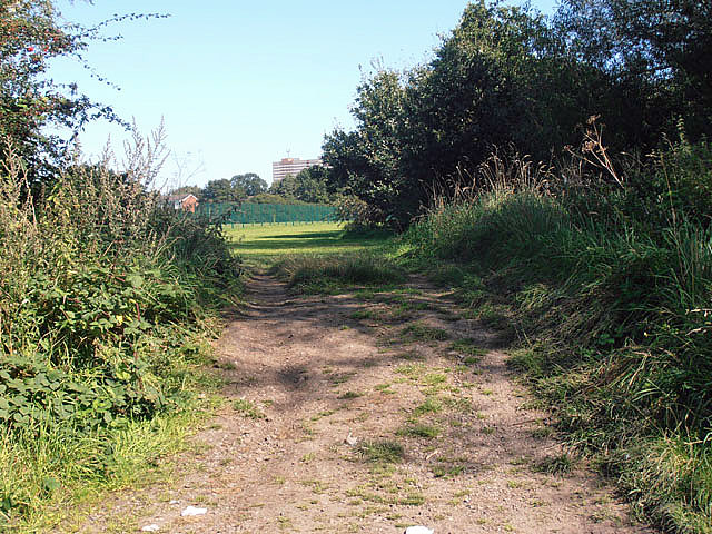 An entrance into the playing fields