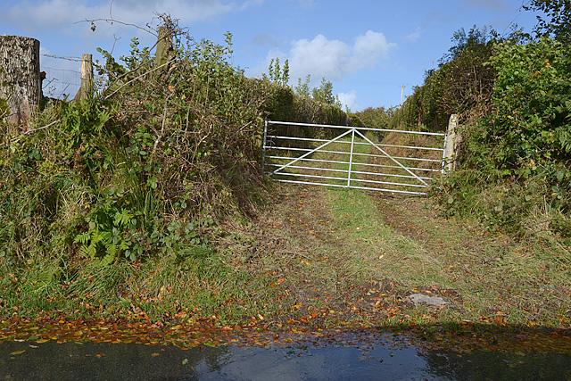 Lane to Deri-Garon farm