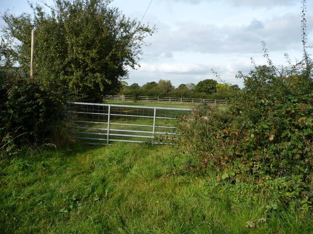 Gate into field, north side of Hanbury Road