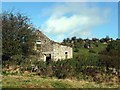 SK2353 : Ruined barn near Brassington by Graham Hogg