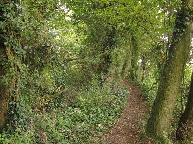 Footpath northwest of Overton