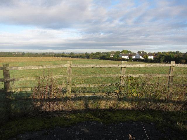 Field by Girton