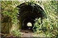 ST7967 : Footpath underneath the railway by Doug Lee