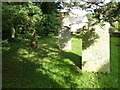 ST8114 : St Paul, Hammoon: churchyard (3) by Basher Eyre