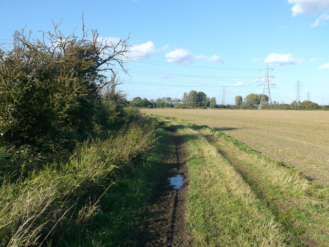 Track to Walnut Tree Farm