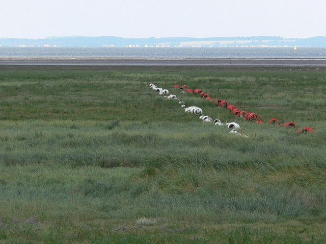 Salt marsh at RAF Holbeach bombing range