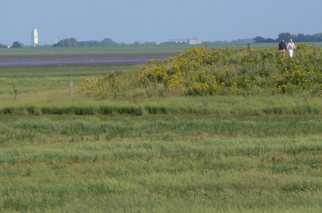 Salt marsh on The Wash coast