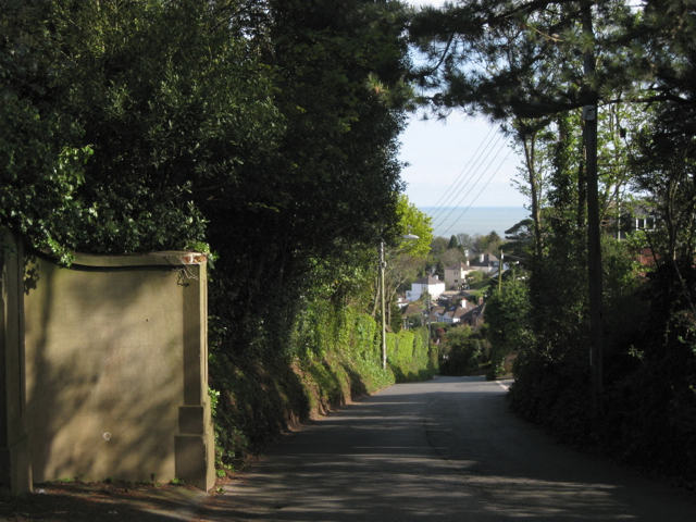 Looking down Buckeridge Road