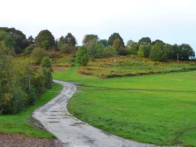 Roadway on Bringsty Common