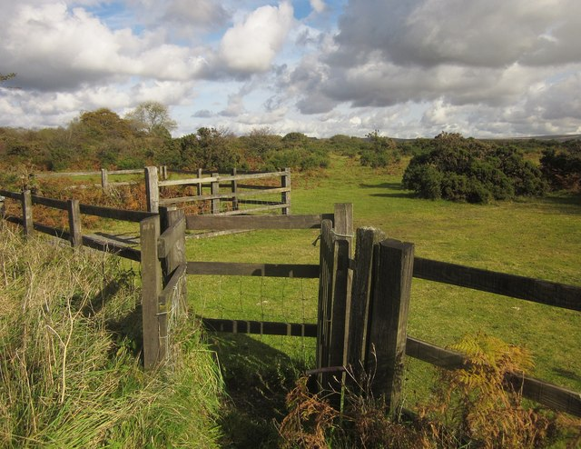 Gate onto Roborough Down