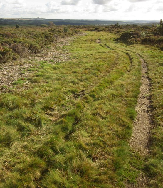 Path on Roborough Down