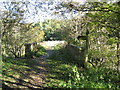 NT2340 : Neidpath Viaduct Footpath by frank smith