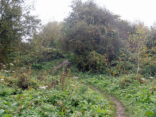 Narrow, muddy path (The Severn Way)