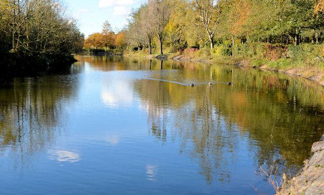 Lake, Victoria Park, Belfast (2)