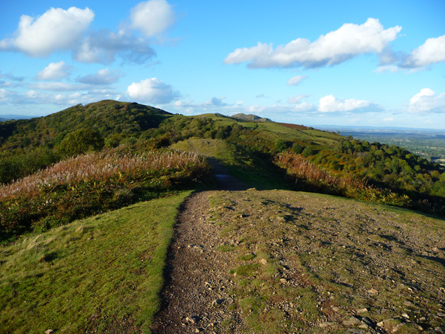 Swinyard Hill