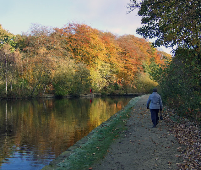 Frosty morning walk at Etherow