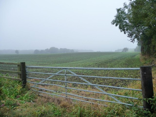 Gateway into recently-sown field