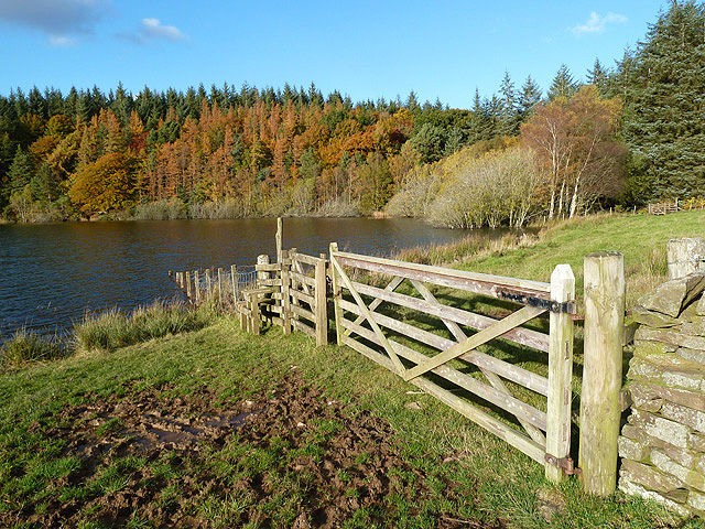 A field gate at Cauldshiels Loch