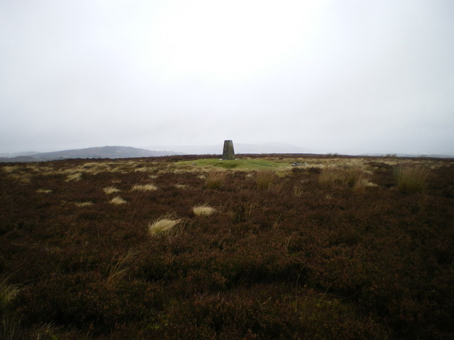 Trig S3108 on Eclusham Mountain