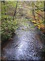 SX1865 : The River Loveny in Pengelly Wood by Rod Allday