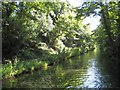SP0979 : Stratford-on-Avon Canal: Reach in Warstock by Nigel Cox