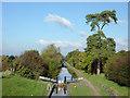 SJ6542 : Audlem Locks, Cheshire by Roger  Kidd