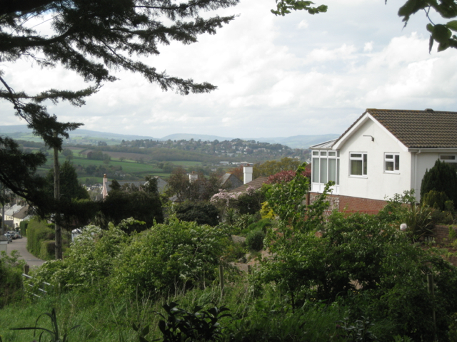 View of Wolborough Hill, Newton Abbot