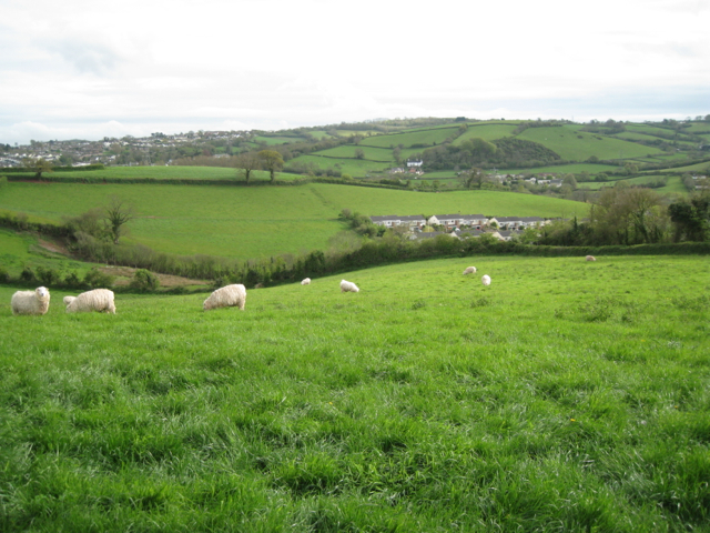 Fields southwest of Kingskerswell