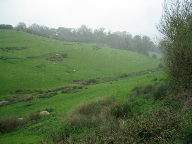 The Beer's Brook valley in the rain