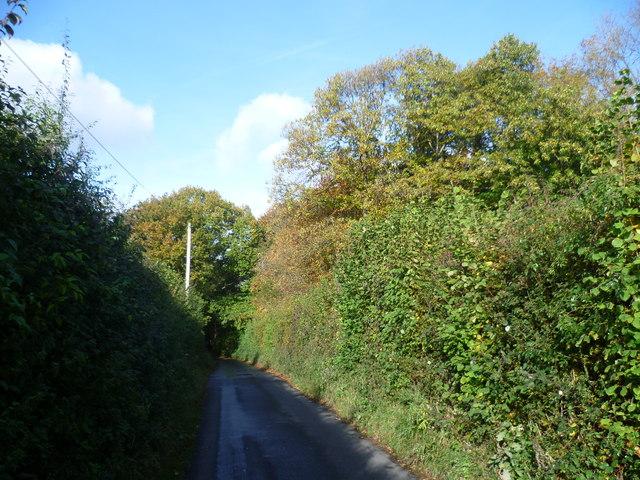 Charmwood Lane