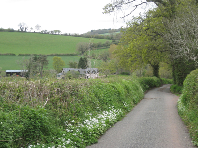 Willowpark Lane in the Aller Brook valley