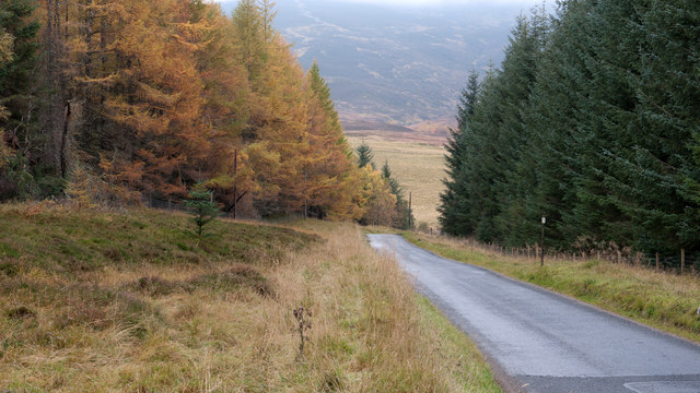 Road descending towards Braes of Foss
