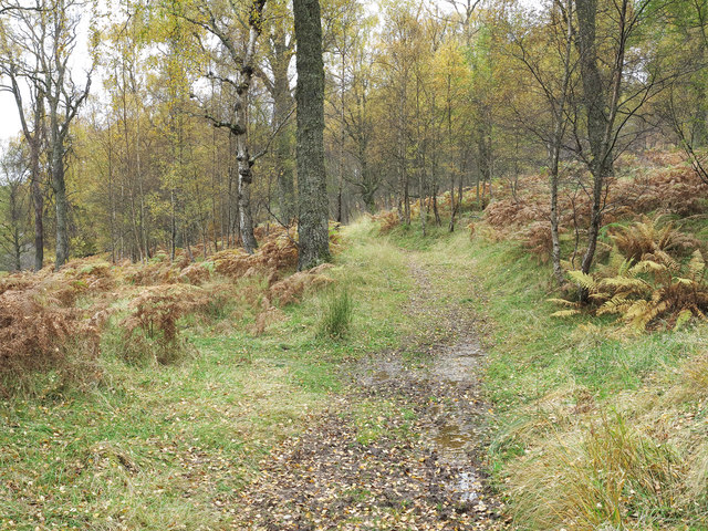 Path in woodland on north side of B846