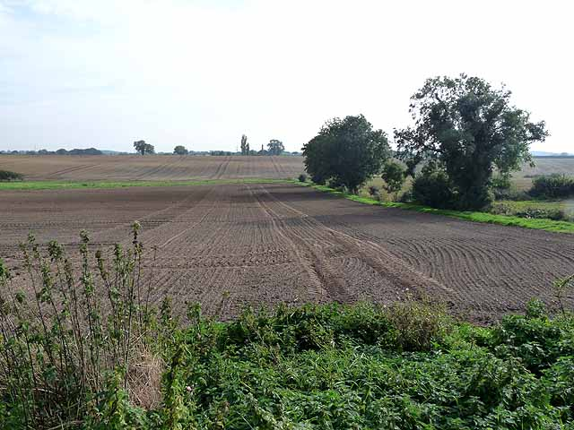 Ploughed field off Newcot Lane