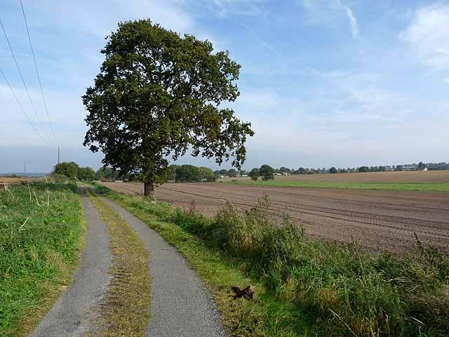 Newcot Lane