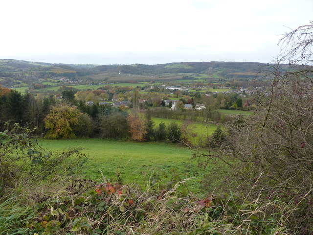 Looking west from Holt Wood